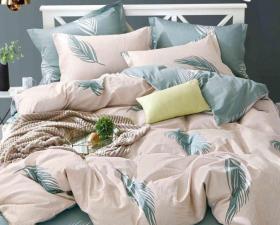 1.5 спальный комплект постельного белья «15CAND004»