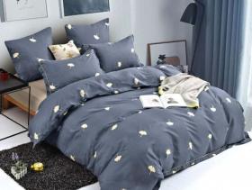 2-х спальный комплект постельного белья «22АЛ21»